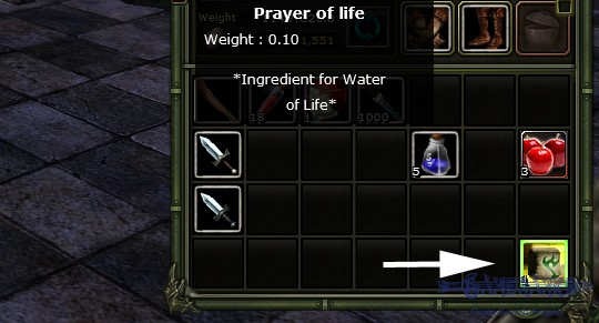What is Prayer of Life for? | Game Rankings & Reviews